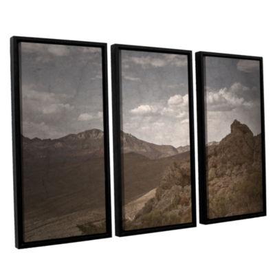 Brushstone Wishing For Wings 3-pc. Floater FramedCanvas Wall Art