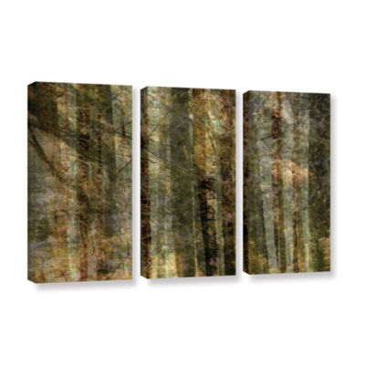 Brushstone Wood For The Trees 3-pc. Gallery Wrapped Canvas Wall Art