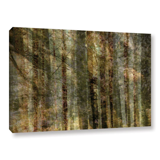 Brushstone Wood For The Trees Gallery Wrapped Canvas Wall Art