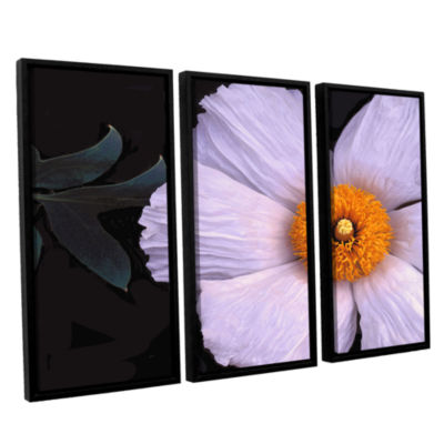 Brushstone Wild Hibiscus By Dean Uhlinger 3-pc. Floater Framed Canvas Wall Art