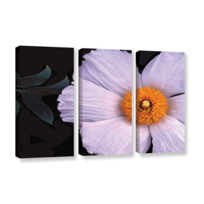 Brushstone Wild Hibiscus By Dean Uhlinger 3-pc. Gallery Wrapped Canvas Wall Art