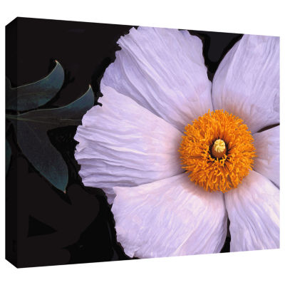 Brushstone Wild Hibiscus By Dean Uhlinger GalleryWrapped Canvas Wall Art