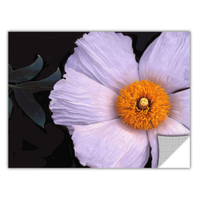 Brushstone Wild Hibiscus By Dean Uhlinger Removable Wall Decal