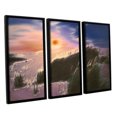 Brushstone Windswept By Dean Uhlinger 3-pc. Floater Framed Canvas Wall Art