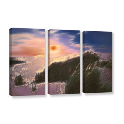 Brushstone Windswept By Dean Uhlinger 3-pc. Gallery Wrapped Canvas Wall Art