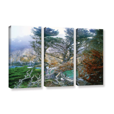 Brushstone Whalers Cove Morning Point Lobos By Dean Uhlinger 3-pc. Gallery Wrapped Canvas Wall Art