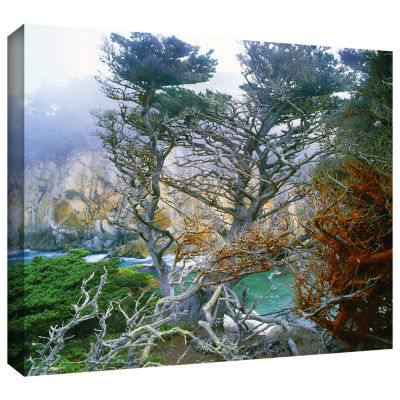 Brushstone Whalers Cove Morning Point Lobos By Dean Uhlinger Gallery Wrapped Canvas Wall Art