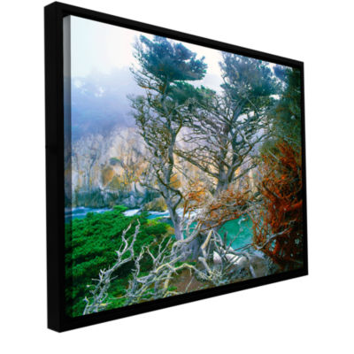 Brushstone Whalers Cove Morning Point Lobos By Dean Uhlinger Gallery Wrapped Floater-Framed Canvas Wall Art