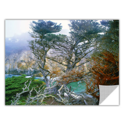 Brushstone Whalers Cove Morning Point Lobos By Dean Uhlinger Removable Wall Decal