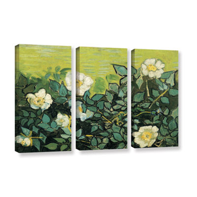 Brushstone Wild Roses 3-pc. Gallery Wrapped CanvasWall Art