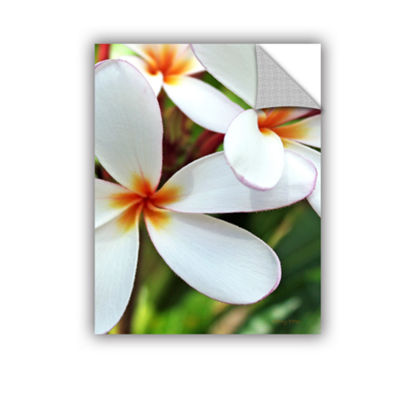 Brushstone White Plumeria Removable Wall Decal
