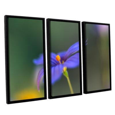 Brushstone Wildflower Dance 3-pc. Floater Framed Canvas Wall Art
