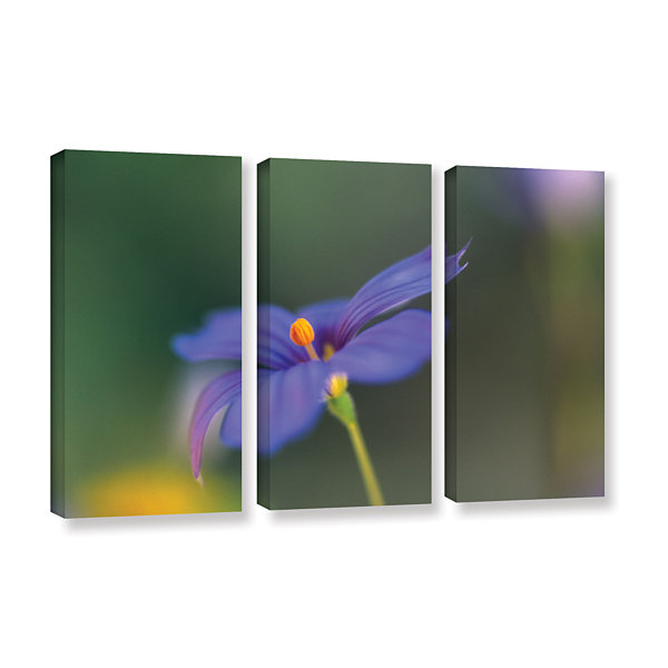 Brushstone Wildflower Dance 3-pc. Gallery WrappedCanvas Wall Art