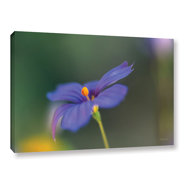 Brushstone Wildflower Dance Gallery Wrapped CanvasWall Art