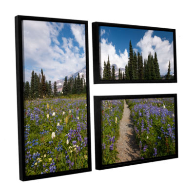 Brushstone Wild Flowers Path To Mt Rainier 3-pc. Flag Floater Framed Canvas Wall Art