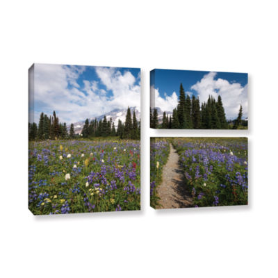 Brushstone Wild Flowers Path To Mt Rainier 3-pc. Flag Gallery Wrapped Canvas Wall Art