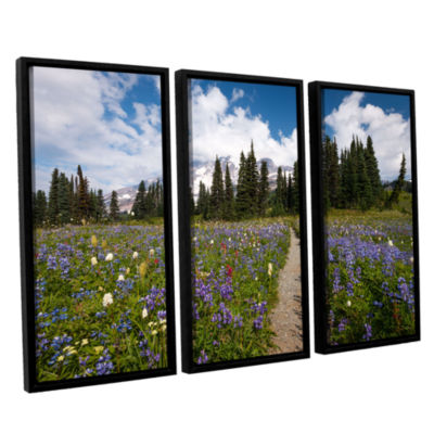 Brushstone Wild Flowers Path To Mt Rainier 3-pc. Floater Framed Canvas Wall Art