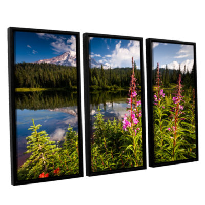 Brushstone Wild Flowers And Mt Rainier Horizontal3-pc. Floater Framed Canvas Wall Art