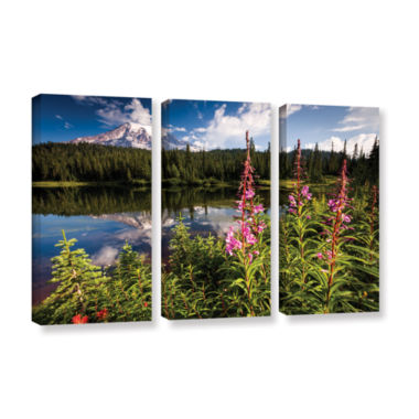 Brushstone Wild Flowers And Mt Rainier Horizontal3-pc. Gallery Wrapped Canvas Wall Art