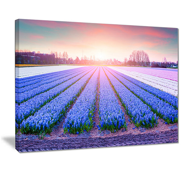 Designart Field Of Blooming Hyacinth Flowers Abstract Canvas Artwork