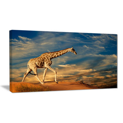 Designart Giraffe On Sand Dune Animal PhotographyArt