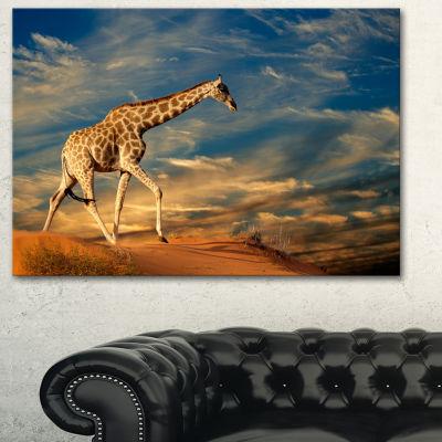 Designart Giraffe On Sand Dune Animal PhotographyArt