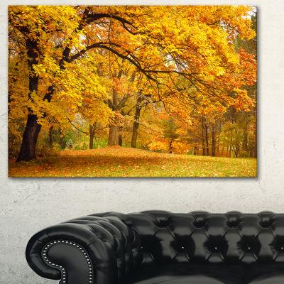 Designart Golden Autumn Forest Landscape Photography Canvas Print - 3 Panels