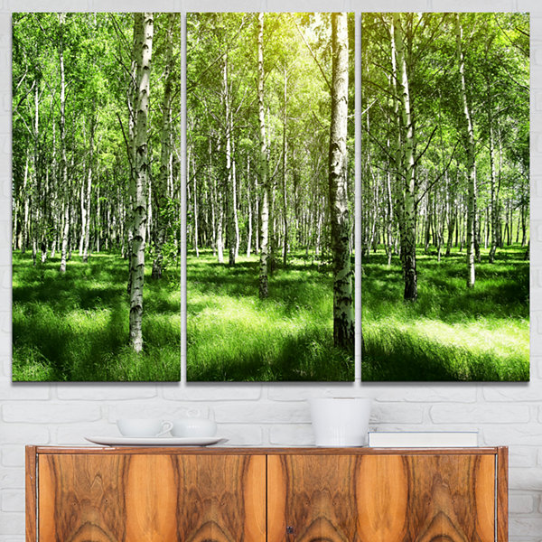 Designart Beautiful Birch Grove Landscape Art Print Canvas - 3 Panels