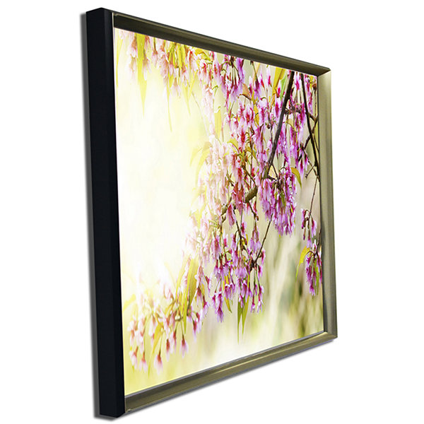 Designart Blooming Cherry Flowers Floral Photography Art