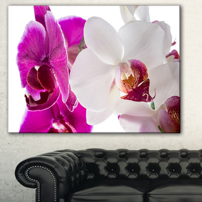 Designart Blooming Orchid Flowers Abstract PrintOnCanvas