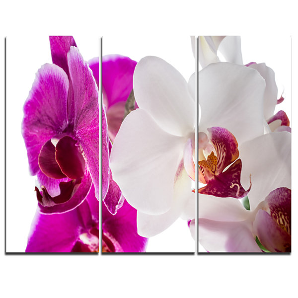 Designart Blooming Orchid Flowers Abstract PrintOnCanvas - 3 Panels