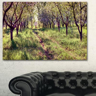 Designart Blossom Apples Garden Photography CanvasArt Print