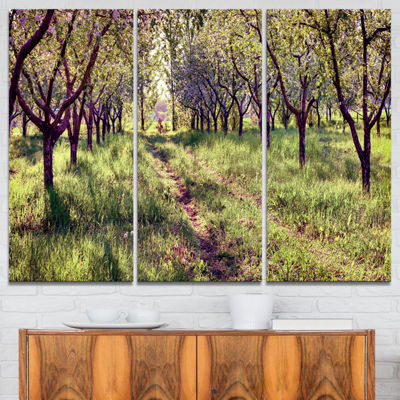 Designart Blossom Apples Garden Photography CanvasArt Print - 3 Panels