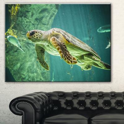 Designart Huge Turtle Swimming Animal Canvas ArtPrint - 3 Panels