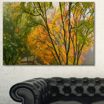 Designart Canopy Of Maple Trees In Fall Floral Photo Canvas Print