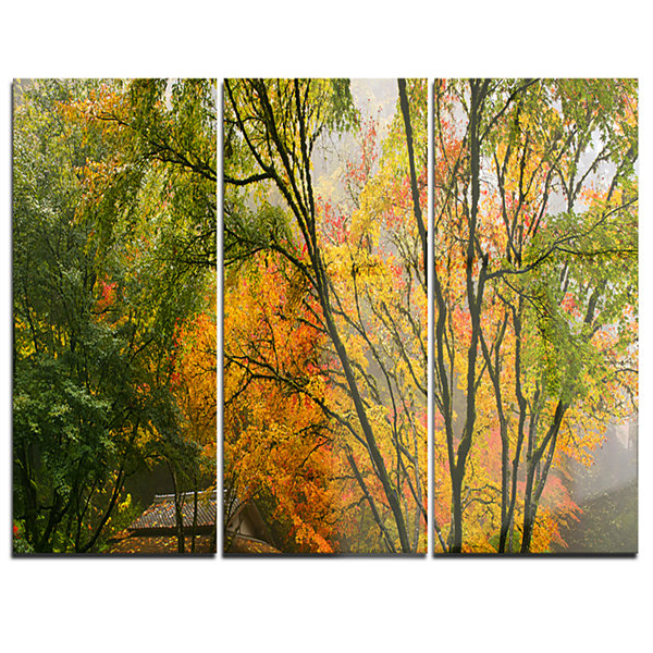Designart Canopy Of Maple Trees In Fall Floral Photo Canvas Print - 3 Panels