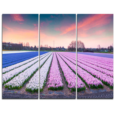 Designart Colorful Hyacinth Flowers At Sunrise Photography Canvas Art Print - 3 Panels