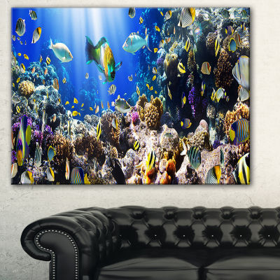 Designart Coral Colony And Coral Fish Seascape Canvas Art Print - 3 Panels