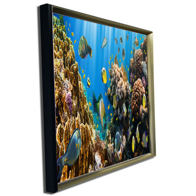 Designart Coral Colony Panorama Photography CanvasArt Print