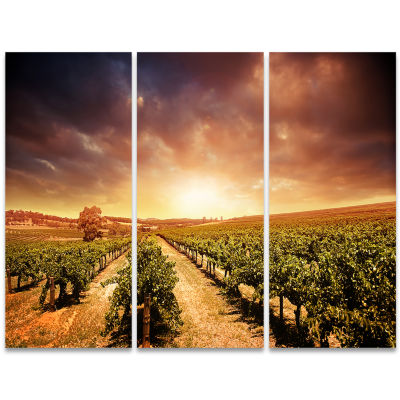 Designart Vineyard With Stormy Sunset Wall Art Landscape - 3 Panels