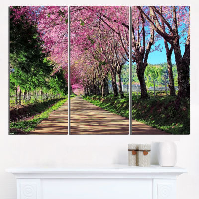 Design Art Cherry Blossom Pathway In Chiang Mai Landscape Canvas Art Print - 3 Panels