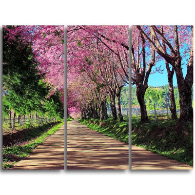 Designart Cherry Blossom Pathway In Chiang Mai Landscape Canvas Art Print - 3 Panels