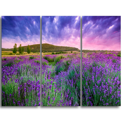 Designart Summer Lavender Field In Tihany Modern Landscape Wall Art Canvas - 3 Panels