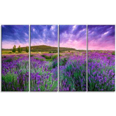 Designart Summer Lavender Field In Tihany Modern Landscape Wall Art Canvas - 4 Panels