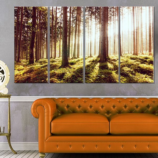 Designart Early Morning Shadows Of Forest Canvas Art Print - 4 Panels