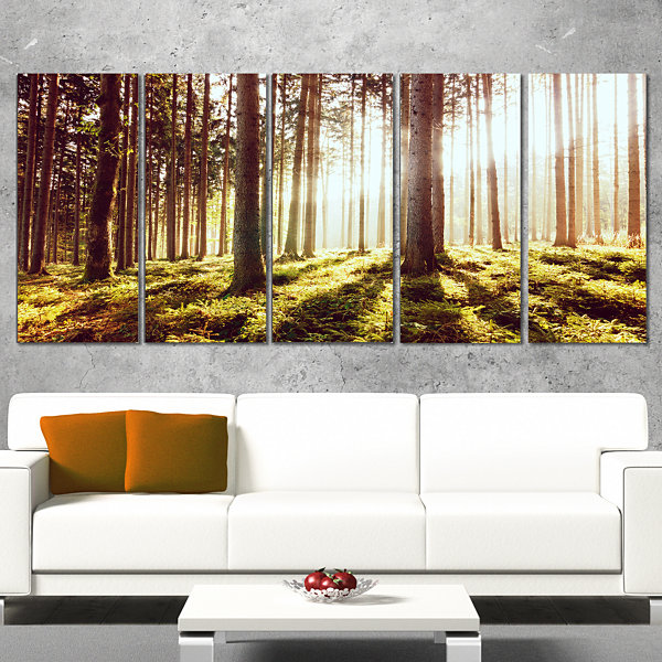 Design Art Early Morning Shadows Of Forest Canvas Art Print - 5 Panels