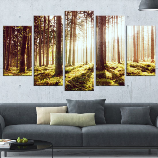Designart Early Morning Shadows Of Forest Canvas Art Print - 5 Panels