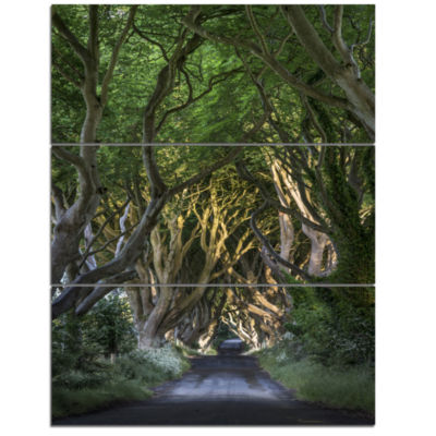 Design Art The Dark Hedges Landscape Photography Canvas Art Print - 3 Panels