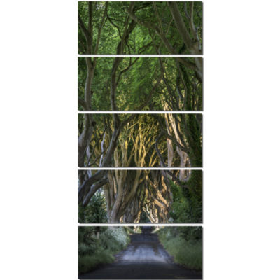 Designart The Dark Hedges Landscape Photography Canvas Art Print - 5 Panels