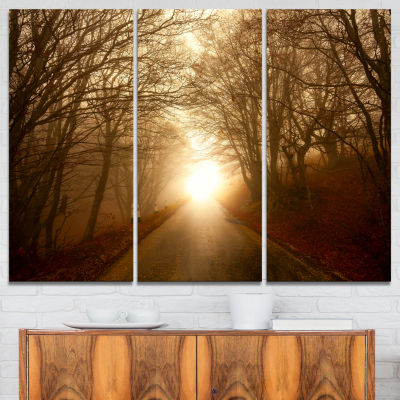 Designart Path To Sunlight In Autumn Forest Landscape Photography Canvas Print - 3 Panels